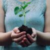 imagem de senhora a segurar uma planta